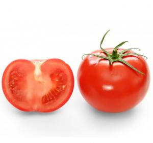 Buah tomat yang bernutrisi