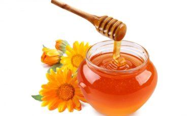 Membedakan madu asli dan palsu