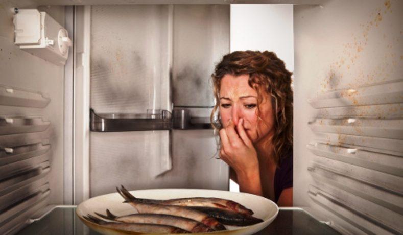 Tips Sederhana Agar Makanan Tidak Mudah Basi