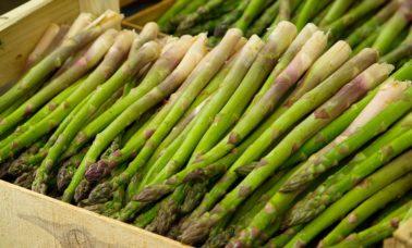 Sayur asparagusyang bermanfaat