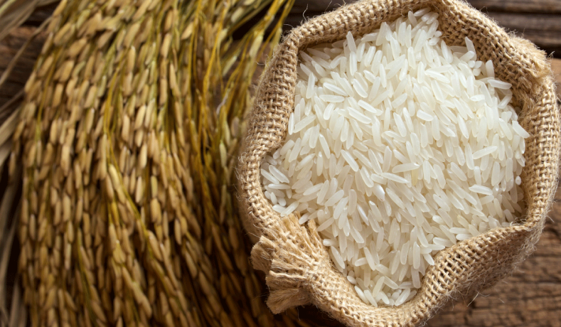 Kutu beras