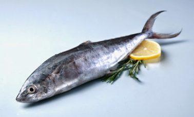 Hilangkan bau amis pada ikan tongkol